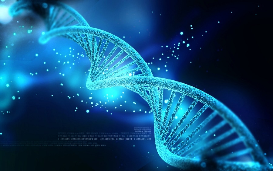 Researchers Develop the World's Smallest Programmable DNA Nanothermometer