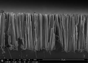 Researchers Work Out New Eco-Friendly Method for Making Silicon Nanowires