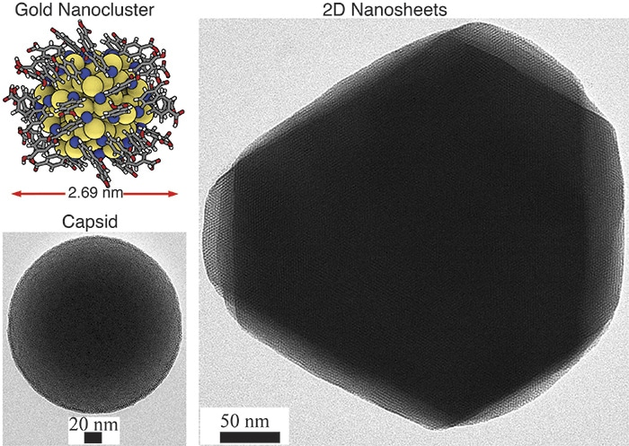 New Study Discovers Self-Assembling 2D and 3D Materials from Tiny Gold Nanoclusters