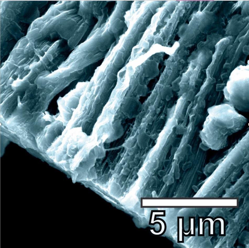 lithium metal batteries improved by using hybrid graphene nanotubes as anode. Black Bedroom Furniture Sets. Home Design Ideas