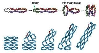 Switchable DNA Machines for Storing Information