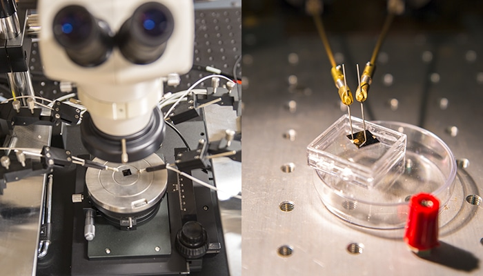 """Internet of Things Advances with New Breed of """"Memristors"""""""