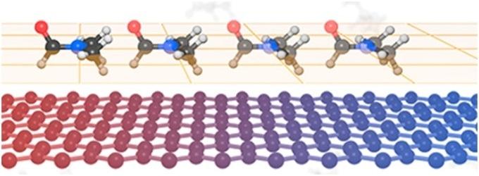Revealing the Mechanisms Behind the Enhanced Thermal Properties of Graphene Nanofluids