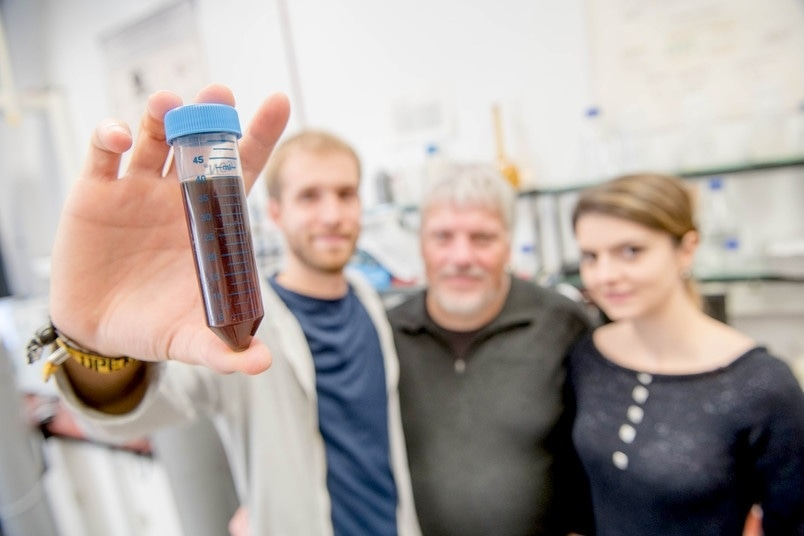 Researchers Transfer Structural Characteristics of Natural Enzymes to Metallic Nanoparticles