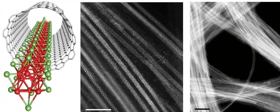 Researchers Use Carbon Nanotube Templates to Produce Isolated TMM Nanowires