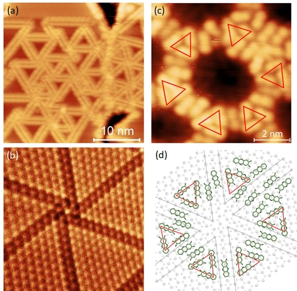 Organic Porous Structures on 2D Defect Networks