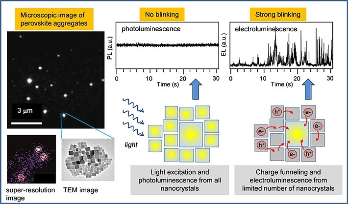 Efficient Nanoscale Characterization of Electroluminescence in Perovskite Materials