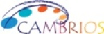 Silver Nanowire-Based Solution Provider, Cambrios Establishes Branch Office in Tokyo
