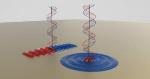 New Nanoscale Device Converts Optical Signal into Waves That Travel along a Metal Surface
