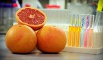 Nanoparticles for Drug Delivery Created from Grapefruit