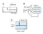 Novel Technique to Build Pneumatic Microvalves into 2-D and 3-D Microfluidic Devices