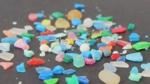 New Book on Marine Litter Focuses on Impact of Nano-Plastic Fragments