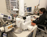 New International Electron Microscopy Demonstration and Application Facility for Quorum