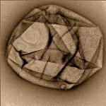 High-Speed AFM Reveals Deformation of Cell Membranes by Protein Complex