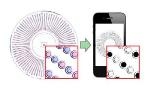 New Visual Readout Method Enables Cell-Phone Camera to Quantify Single Nucleic-Acid Molecules