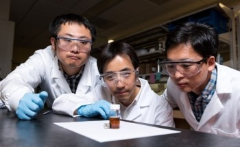 Researchers Develop Robust Strategy to Produce Rich Variety of Nanorods