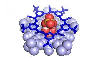 Newly Detected Molecular Structure Provides Chemical Solutions for Environmental Problems
