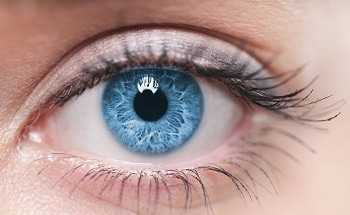 Nanoparticle Drug Delivery Systems Help in Ophthalmic Development