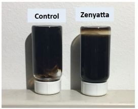 Zenyatta Ventures Announces Successful Testing of Graphene Oxide Material by U.S. Based Advanced Materials Company