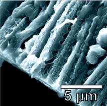 Lithium Metal Batteries Improved by Using Hybrid Graphene Nanotubes as Anode