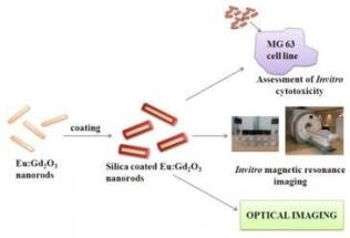 Indian Researchers Create Nanoparticle-Based Contrast Agent for Dual Modal Imaging of Cancer