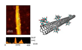 Single-Walled Carbon Nanotube Device can Detect Below-Threshold Signals Via Noise