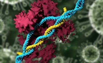 Use of Nanoparticles to Deliver CRISPR Genome-Editing System into Mice