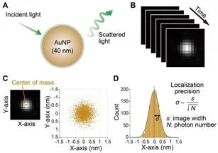Novel Dark-Field Microscopy System Developed for Observing Motions of Kinesin