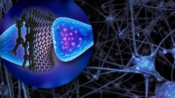 Graphene Flakes Might Influence Operation of Neurons in the Brain