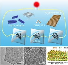 Researchers Develop 2D Polymers with Cylindrical Mesopores on Graphene Nanosheets for Micro-Supercapacitors