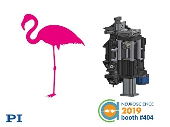 Ground-breaking Modular Research Microscope, Showcasing in PI Booth at Neuroscience 2019