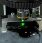 11th International ELMI Meeting – Lumen Dynamics Group Inc. Introduces the X-Cite XP750 Fluorescence Microscopy