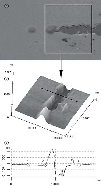 AZoNano - The A to Z of Nanotechnology - Optical micrograph (a) of a typical critical failure point for a progressive load scratch on a dielectric thin film. The SFM image (b) confirms the extent of delamination, from which a profile (c) could be extracted in order to verify pile-up phenomena (dotted line in (b)).