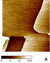 Online Journal of Nanotechnology - Constant current STM image of Au(111) terraces. Scan size 180 x 180 nm. Tunnelling current 50 pA and 0.2 V bias and scan rate 3 Hz. The cross section profile is shown in the lateral panel.