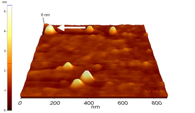 AZoNano – Online Journal of Nanotechnology - Topographic image of Au colloids deposited on MPTMS treated glass (Sample 1) as measured by CM-AFM in air.