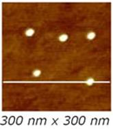AZoNano – Online Journal of Nanotechnology - 300 x 300 nm2 TM-AFM image of the Sample 1 .