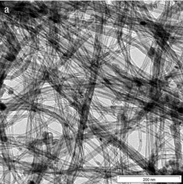 AZoNano - Nanotechnology - TEM images of CNTs at Low resolution