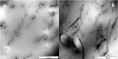 AZoNano - Nanotechnology - TEM image of CNTs in SMR CV60,  1 wt % of CNTs and 3 wt % of CNTs.